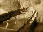 Casier - cimitero delle barche 4